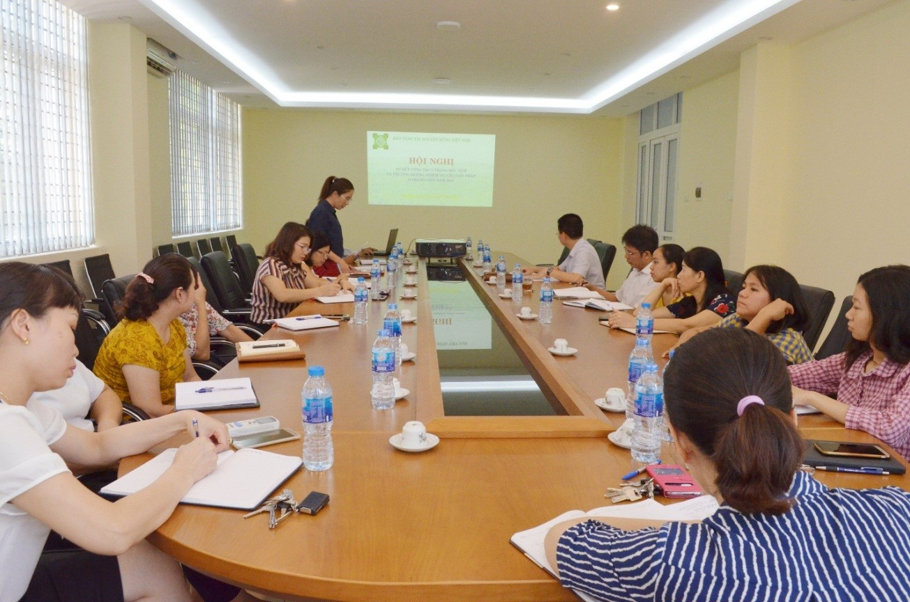 Vietnam Forest Museum's Bi-annual meeting to evaluate work of first 6 months and plan for last 6 months of 2018